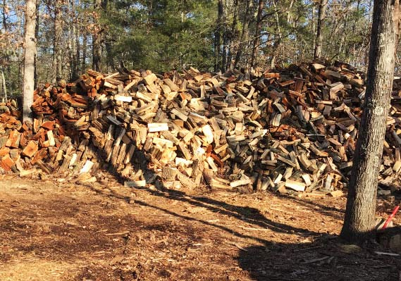 Firewood in South Jersey